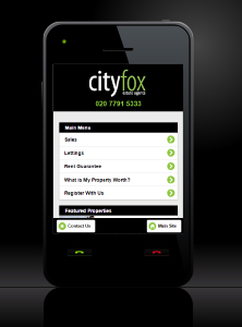 Basic Web Site - www.city-fox.co.uk