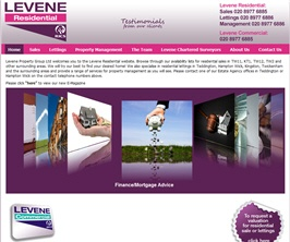 Bespoke Web Site - www.levene-group.com