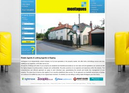 Pro Web Site - www.montaguesepping.com/