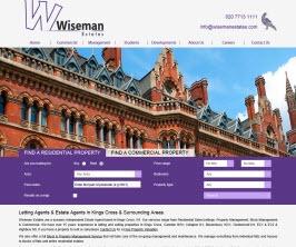 Pro Web Site - www.wisemanestates.com